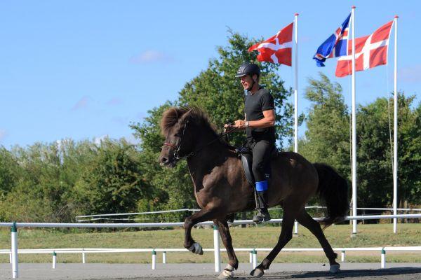 Saga Svendborg Sport